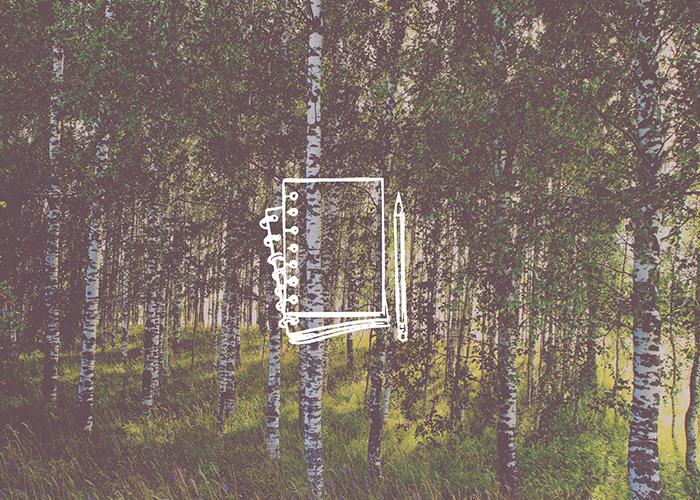 Metsatööde kalender. Metsaühistu