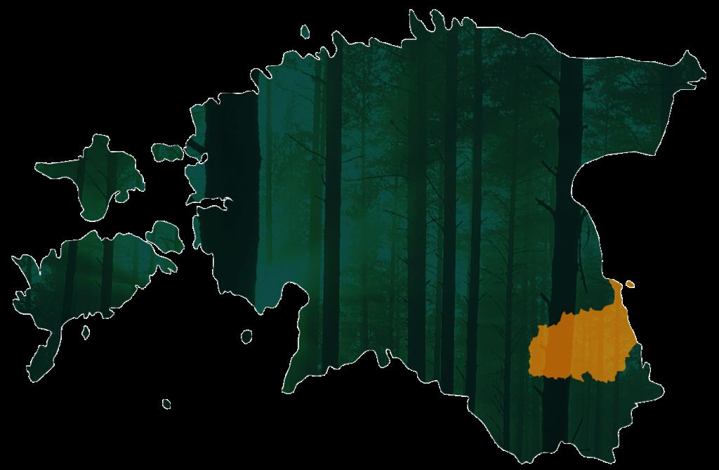 Põlvamaa Metsaühistu