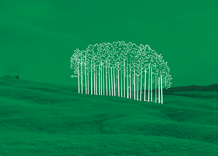 Miks liituda Metsaühistuga. Põlvamaa Metsaühistu